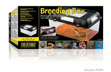 Exo Terra Box Hodowlany M 30,2x19,6x14,7cm