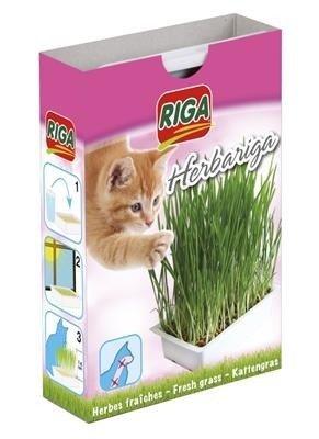 RIGA-Trawa dla kota 300g