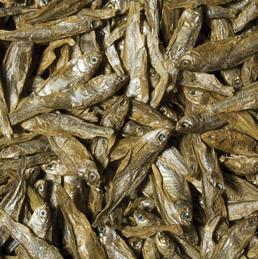 Tropical Dried Fish 250 ml suszone ryby