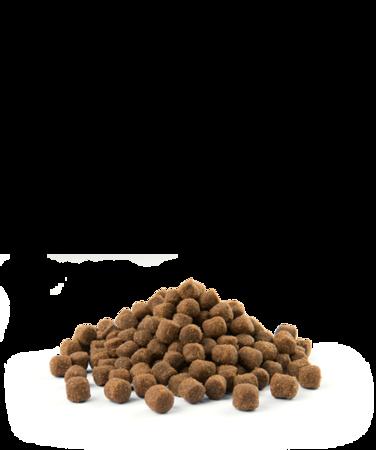 VERSELE-LAGA Opti Life Adult Mini 7,5 kg - karma dla dorosłych psów ras małych i miniaturowych ( drób )